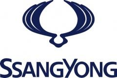 SsangYong_Motors_Deutschland_Bundesligasponsoring_Ssangyong_Logo_72dpi