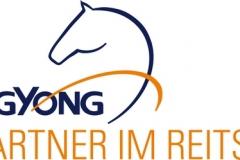 SsangYong Reitsportsponsoring Logo